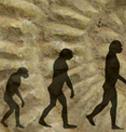 Évolutionnisme
